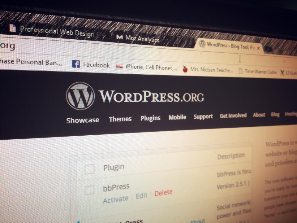 WordPress Web Consulting and Web Design Image