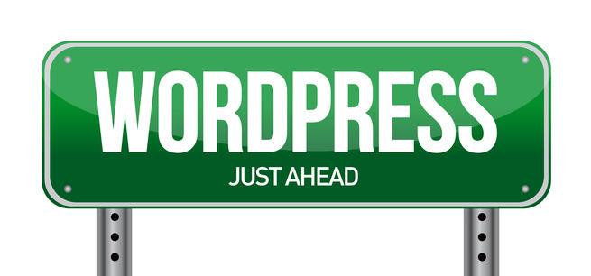 WordPress Websites WordPress Consulting San Diego