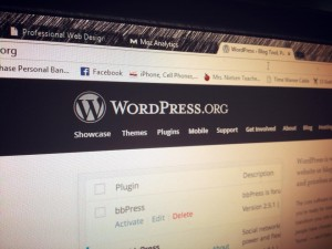 WordPress Web Consulting