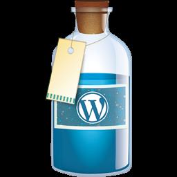 WordPress Consulting San Diego
